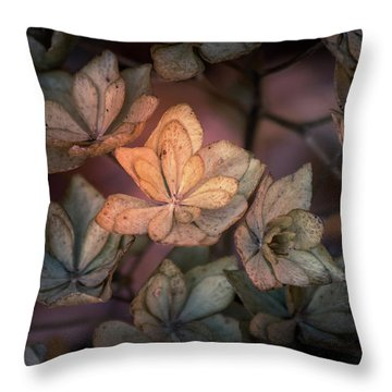 Winter Glow Throw Pillow