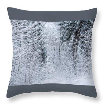 Winter Glow- Throw Pillow