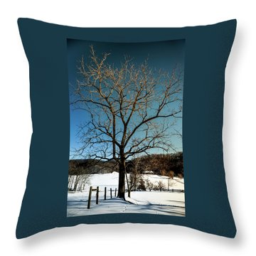 Winter Glow Throw Pillow by Karen Wiles