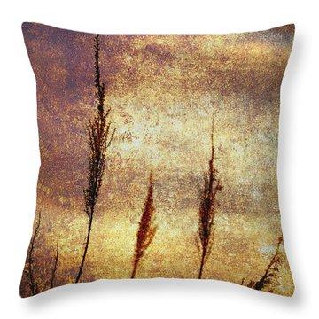 Winter Gold Throw Pillow by Skip Nall
