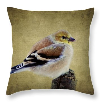 Winter Goldfinch Throw Pillow