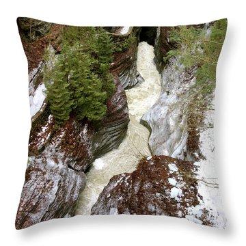 Winter Gorge Throw Pillow