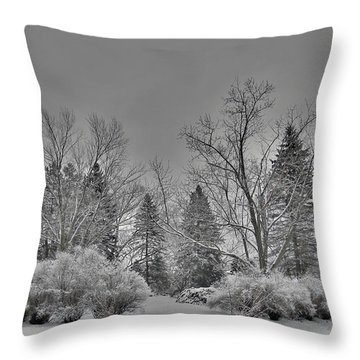 Winter Harmony Throw Pillow by Teresa Schomig
