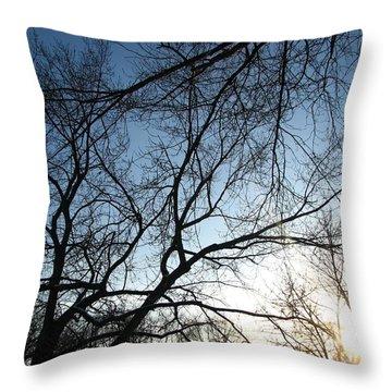 Winter Haze Throw Pillow