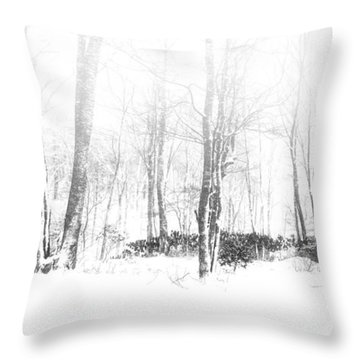 Snowy Forest - North Carolina Throw Pillow