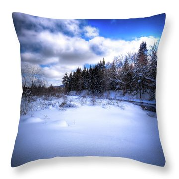 Throw Pillow featuring the photograph Winter Highlights by David Patterson