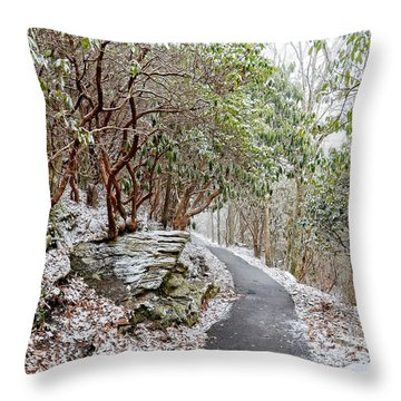Winter Hiking Trail Throw Pillow