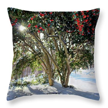 Throw Pillow featuring the photograph Winter Holly by Jessica Brawley
