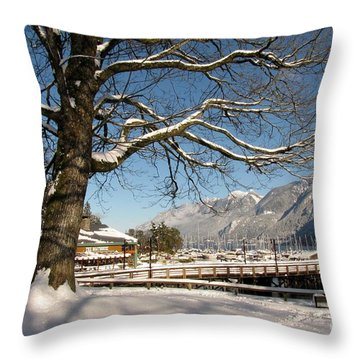 Winter Horseshoe Throw Pillow