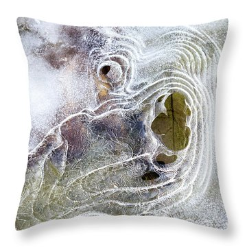 Winter Ice Throw Pillow by Christina Rollo
