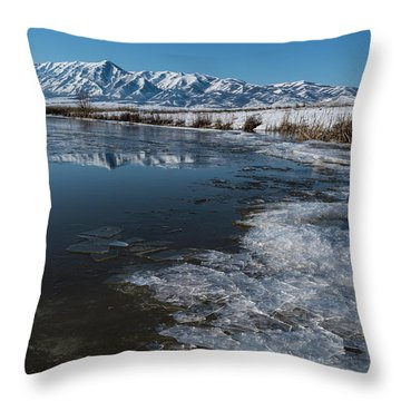 Winter Ice Flows Throw Pillow by Justin Johnson