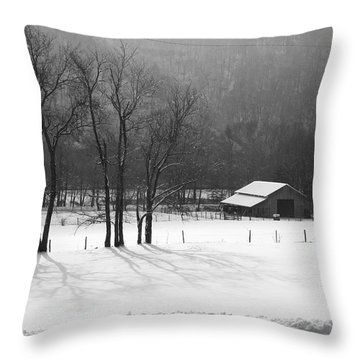 Throw Pillow featuring the photograph Winter In Boxley Valley by Michael Dougherty