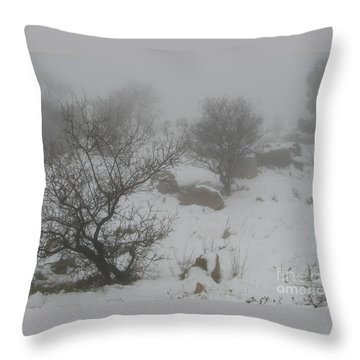 Throw Pillow featuring the photograph Winter In Israel by Annemeet Hasidi- van der Leij