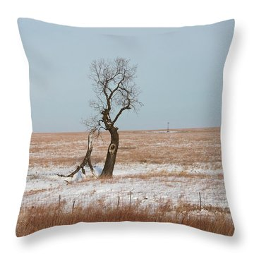 Winter In Kansas Throw Pillow