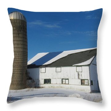Winter  In Mchenry County Throw Pillow