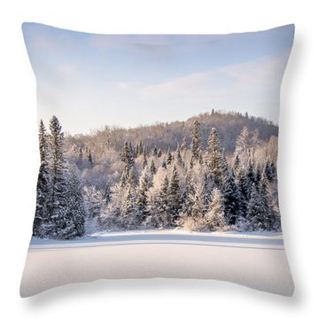 Throw Pillow featuring the photograph Winter In Quebec by Jola Martysz