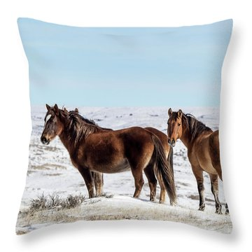 Winter In Sand Wash Basin - Wild Mustangs Throw Pillow