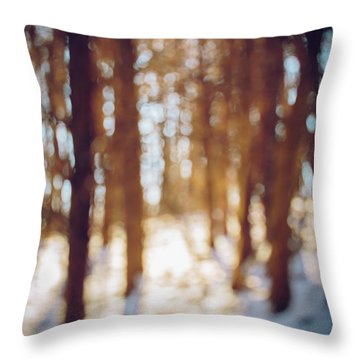 Winter In Snow Throw Pillow