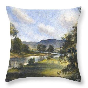 Winter In The Bellinger Valley Throw Pillow by Sandra Phryce-Jones