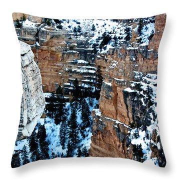 Winter In The Canyon Throw Pillow