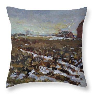 Red Barn Throw Pillows