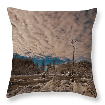 Winter In The Wetlands Throw Pillow