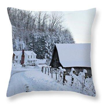 Winter In Virginia Throw Pillow