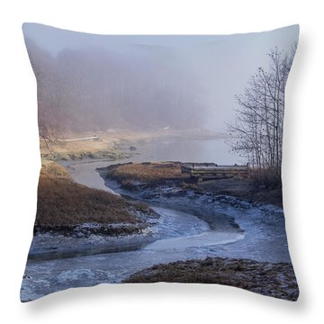 Winter Inlet Throw Pillow by Tom Singleton