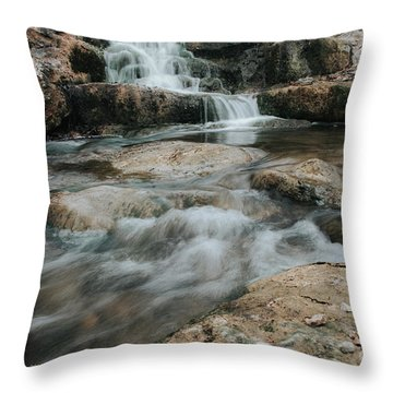 Throw Pillow featuring the photograph Winter Inthe Falls by Iris Greenwell
