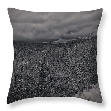 Throw Pillow featuring the photograph Winter Is Coming by Ryan Smith