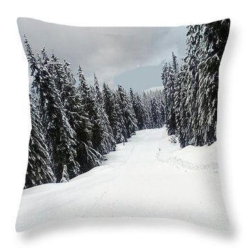 Throw Pillow featuring the photograph Winter Landscape by Bill Thomson