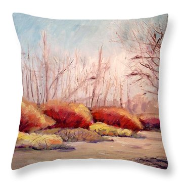 Winter Landscape Dry Creek Bed Throw Pillow