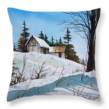 Winter Landscape Throw Pillow by James Williamson