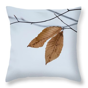 Throw Pillow featuring the photograph Winter Leaves by Tom Singleton