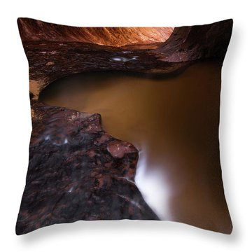 Throw Pillow featuring the photograph Winter Light by Dustin LeFevre