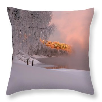 Winter Light Throw Pillow by Rose-Maries Pictures
