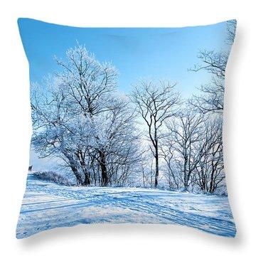 Winter Lights Throw Pillow by Svetlana Sewell
