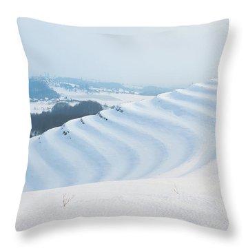 Winter Lines Throw Pillow