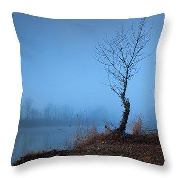 Winter Loner Throw Pillow