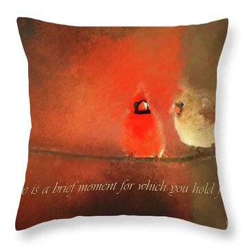 Throw Pillow featuring the photograph Winter Love2 by Darren Fisher