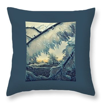Throw Pillow featuring the photograph Winter Magic by Colette V Hera Guggenheim