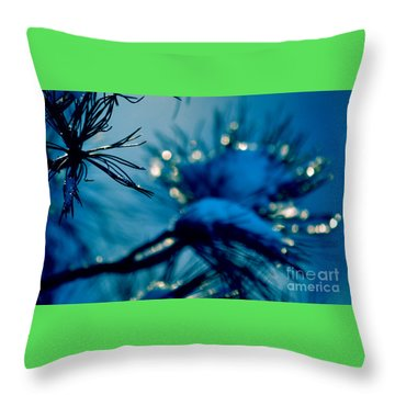 Throw Pillow featuring the photograph Winter Magic by Susanne Van Hulst