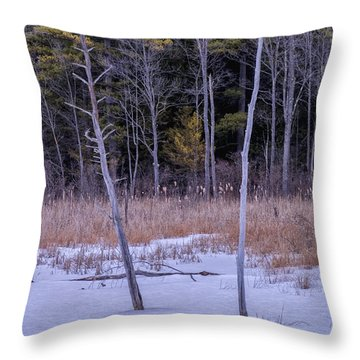 Winter Marsh And Trees Throw Pillow