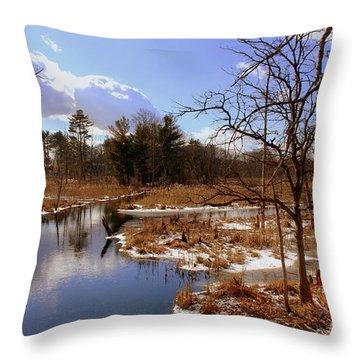 Winter Marsh Throw Pillow