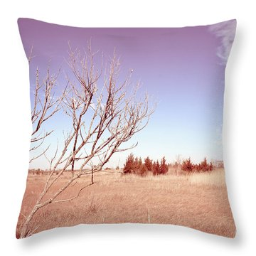 Throw Pillow featuring the photograph Winter Marshlands by Colleen Kammerer