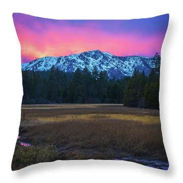 Winter Meadow By Brad Scott Throw Pillow