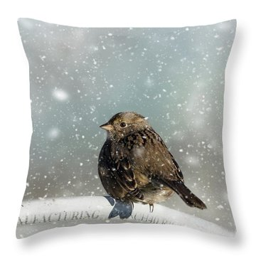 Winter Morning Throw Pillow