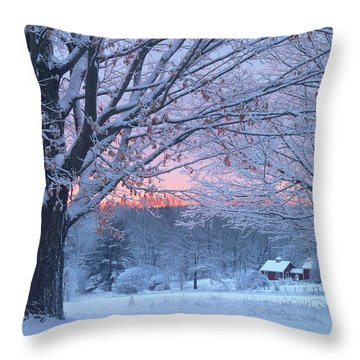 Winter Morning Throw Pillow by John Burk