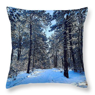 Winter Morning Throw Pillow by Walter Chamberlain
