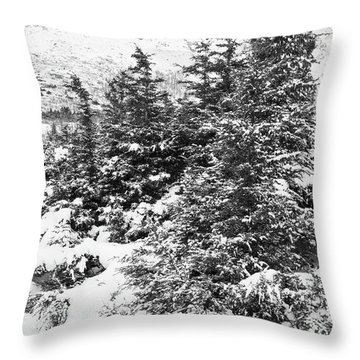Winter Night Forest M Throw Pillow